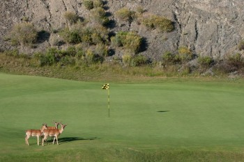 la zagaleta golf and wildlife